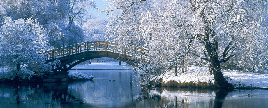 exclusive-winter-garden-views (10)
