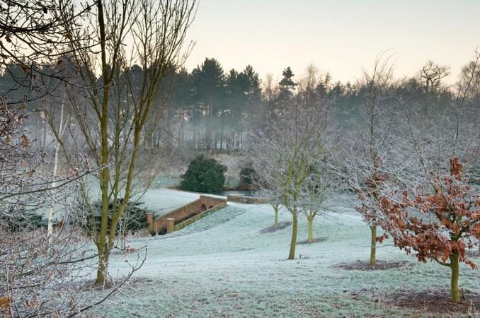 Top 5 Exclusive Winter Garden To Visit Winter Garden Top 5 Exclusive Winter Garden To Visit exclusive winter garden views 7