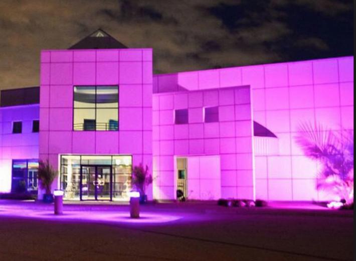 Inside Paisley Park: Where Prince's Brilliant Purple Reign Ascended
