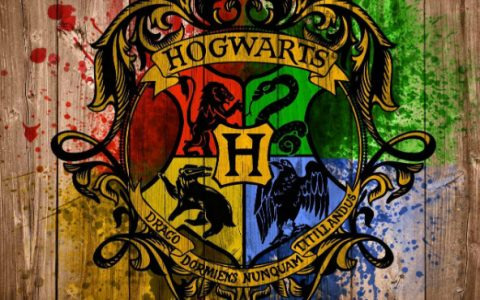 harry potter New Harry Potter Edition With Hogwarts' Colors bbb 480x300